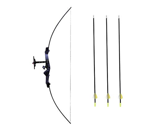 Iris Take Down Bow For Outdoor Hunting Practice Shooting Competition Archery Recurve Bow And Arrow Set , Aluminium Alloy (Black)