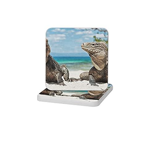 2 posavasos cuadrados de diatomita para decoración del hogar, alfombrillas antideslizantes para bebidas, soporte de cepillo de dientes, bandeja de jabón para baño y cocina, reptiles de Iguana