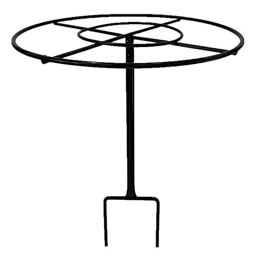 LBSY Paletto di Supporto per Piante Gabbia per Piante da Giardino in Metallo, Supporti per Piante Rotondi Neri/Bianchi, per Peonia, Pomodoro, Verdura, Ortensia, Rosa, Vite, ECC (25 * 32 Cm)