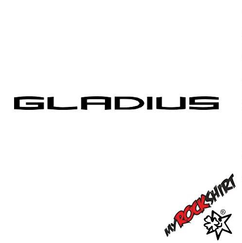 myrockshirt 2 x Tuning-Aufkleber-Set in 20 cm Suzuki Gladius Motorrad Aufkleber Bike Logo Sticker 313 `+ Bonus Testaufkleber Estrel