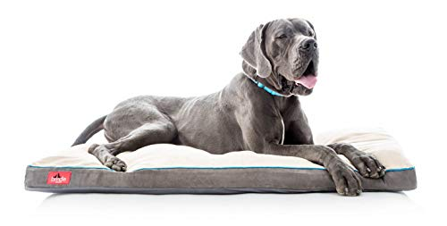 Brindle Soft Shredded Memory Foam Dog Bed with Removable Washable Cover, 52' x 34', Khaki