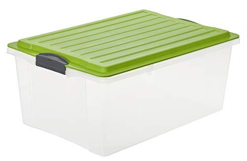 Rotho Compact Aufbewahrungsbox 38 l mit Deckel, Kunststoff (PP), grün/transparent, 38 Liter / A3 ( 57 x 40 x25 cm)