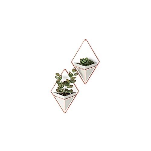 Umbra Trigg Wandvase & Geometrische Deko – Übertopf Für Zimmerpflanzen, Sukkulenten, Luftpflanzen, Kakteen, Kunstpflanzen und Mehr, Metall, Beton/Kupfer, Klein, 2, Gefäß misst 11x 19 x 7,2 cm