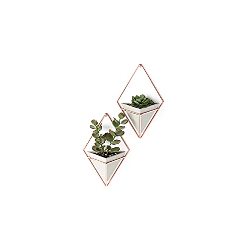 Umbra Trigg Hanging Planter Vase & Geometric Wall Decor Containers-for Succulents, Air, Mini Cactus,...