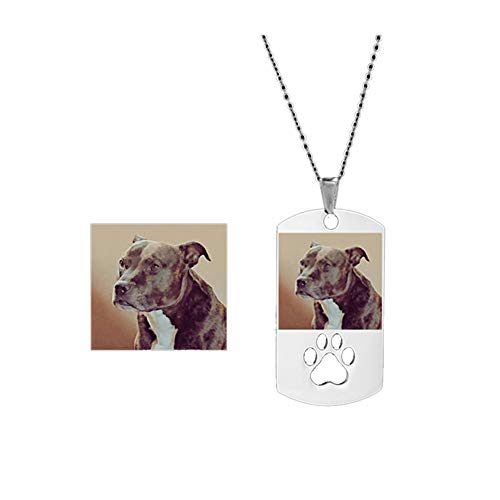 DIY Personalised Pet Photo Necklace - Stainless Steel Custom Engraved Dog Cat Paw Pets Name Picture Pendant Necklaces for Men Women,Free Engraving