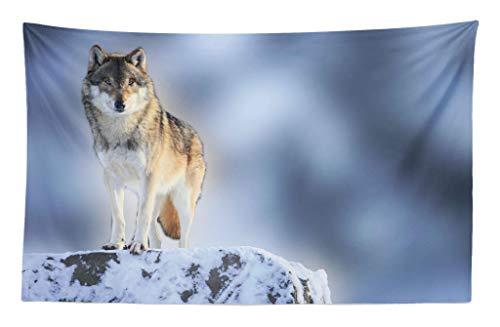 ABAKUHAUS Wolf Wandteppich & Tagesdecke Einsame Wolf ohne seinen Pakt über eisernen Berg auf Einem Gipfel Fotographieaus Weiches Mikrofaser Stoff 230 x 140 cm Kein Verblassen Mehrfarbig