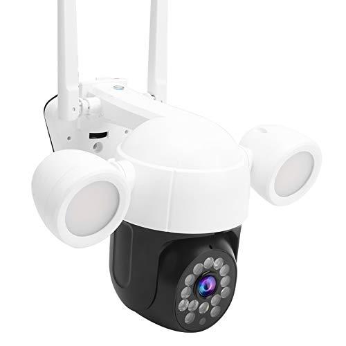 DAUERHAFT Cámara Wi-Fi con grabación de Alarma, 48 Luces, cámara de vigilancia con detección de Movimiento, para vigilancia(European regulations)