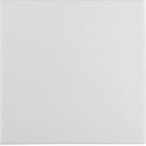 Berker 16208989 Wippe polarweiss