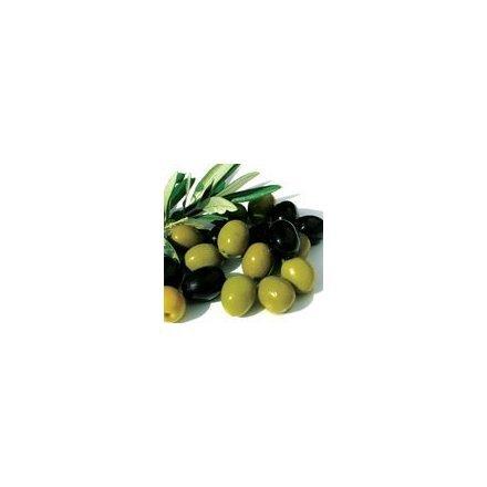 Squalane Olive Pure Anti Aging 8 Oz