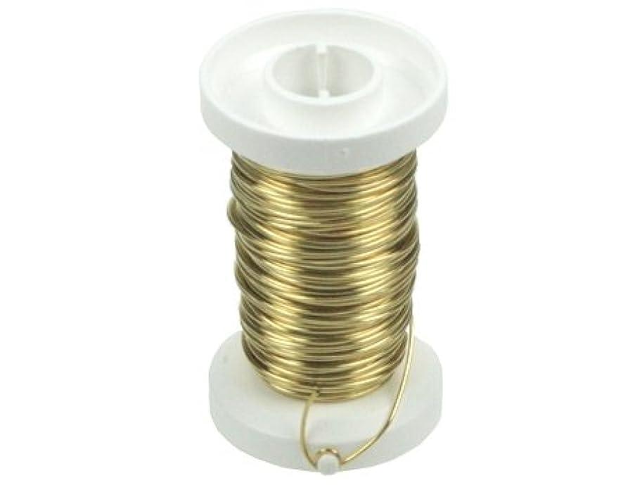 Glorex Brass Wire 0,6?mm Wire Brown 8.69?x 8.5?x 3?cm