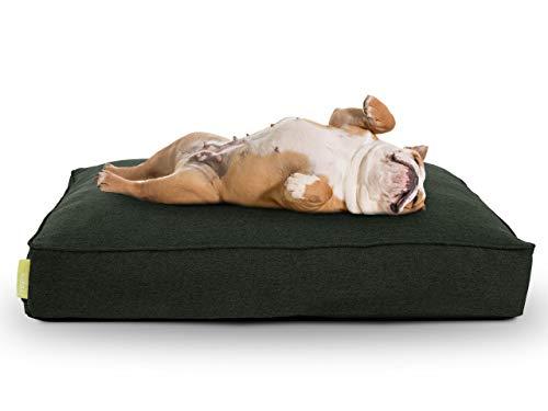 Hyggins Lounger Plus Hundekissen | orthopädisch, Bezug abnehmbar | Boden wasserabweisend...