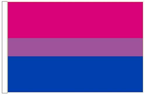 FlagSuperstore© Bi-Pride Bootsflagge 45 x 30 cm – Baumhäuser, Wohnwagen – Ärmel 45 cm x 30 cm – Gay Pride LGBTQ