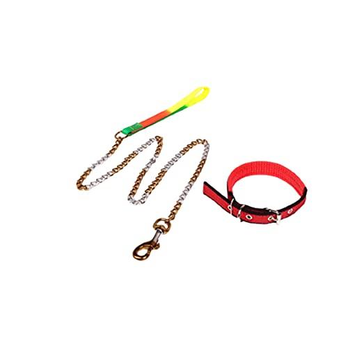 ZZCR Collar De Perro Mascota Cadena De Hierro De Espuma De Metal Collar De Cuerda De Tracción para Mascotas Collar Ajustable De Varios Tamaños Collar con Hebilla A XS