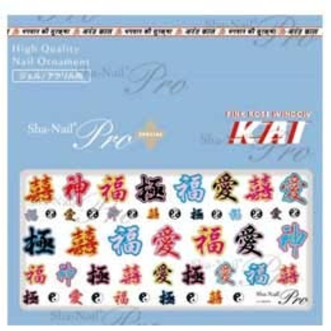 提唱するとんでもない天才写ネイルPlus 漢字 フォント KAI-005