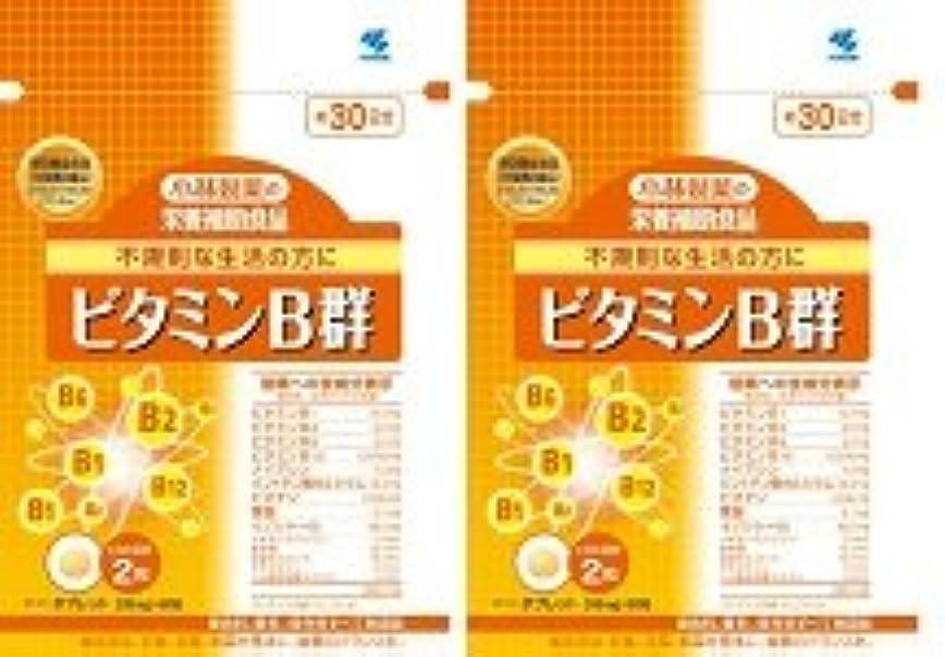 リクルート通常卵【???便】小林製薬 ビタミンB群 60粒×2個セット