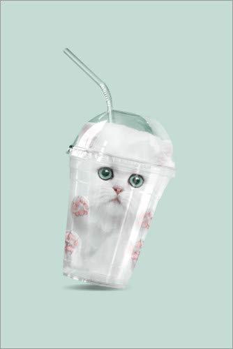 Poster 40 x 60 cm: Catshake von Jonas Loose - hochwertiger Kunstdruck, neues Kunstposter
