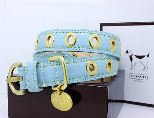 COACH Gold Grommet Turquoise Leather Collar with...