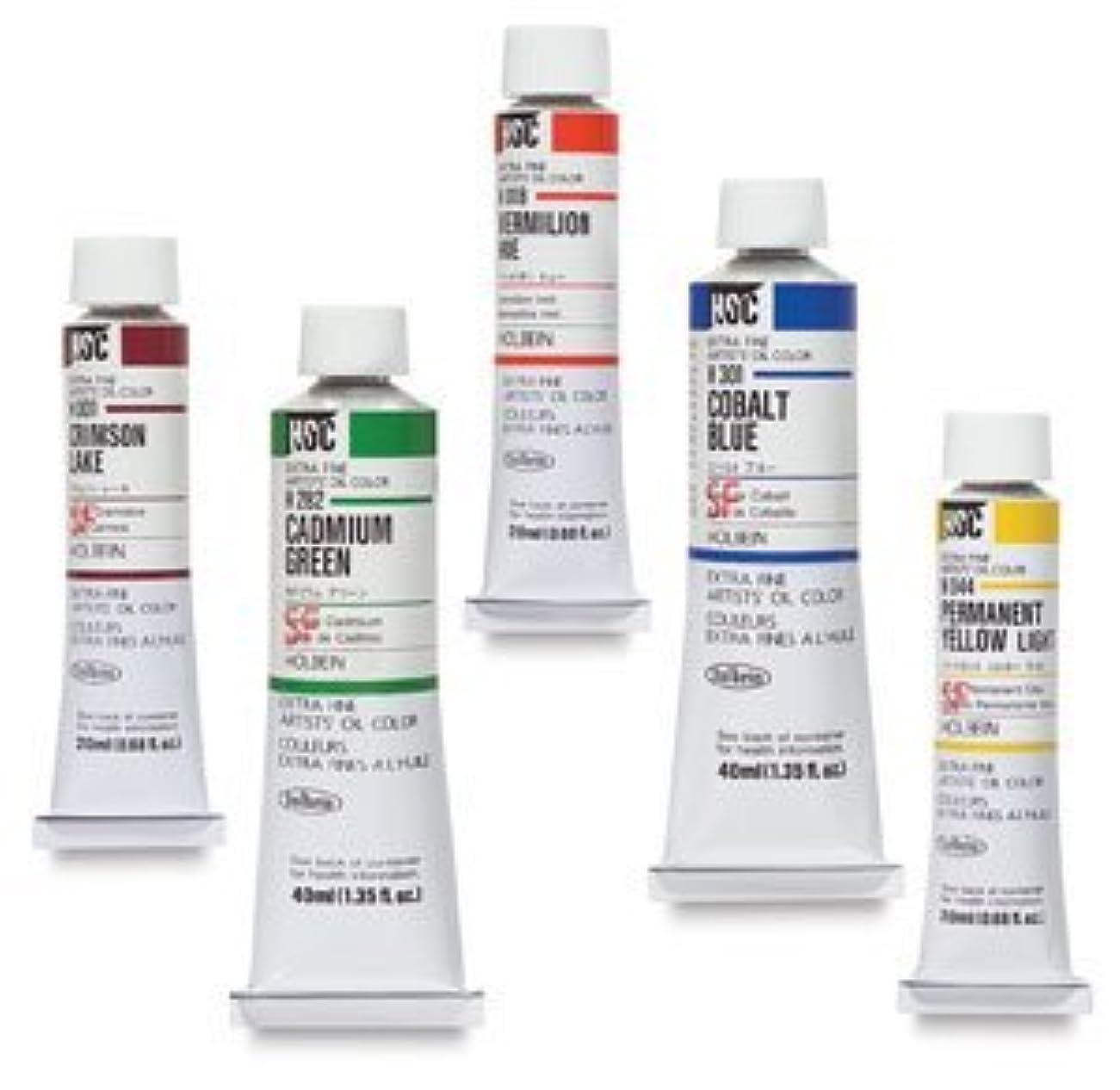 計り知れない阻害する推定するホルベイン 油絵具 ローシェンナ H143 20ml(6号)