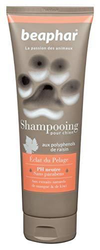 Beaphar Hundeshampoo Haarkosmetik High Bright, eine Größe 250 ml 250 ml