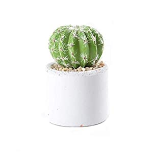 XZWYB Succulent Potted Plant Small Artificial Prickly Pear Handmade Indoor Plastic Flower Landscaping Decoration with Clay Pot 7.5X11cm