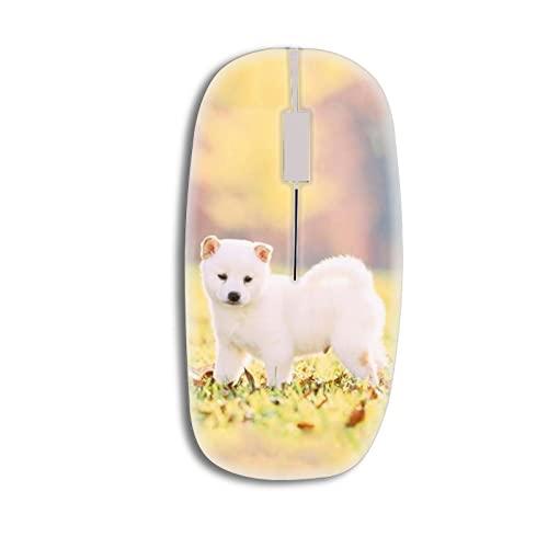 mouse wireless kids Generic Plastica Dura Rigida Magro Compatibile con Computer Wireless Mouse Kid con Happy Dog