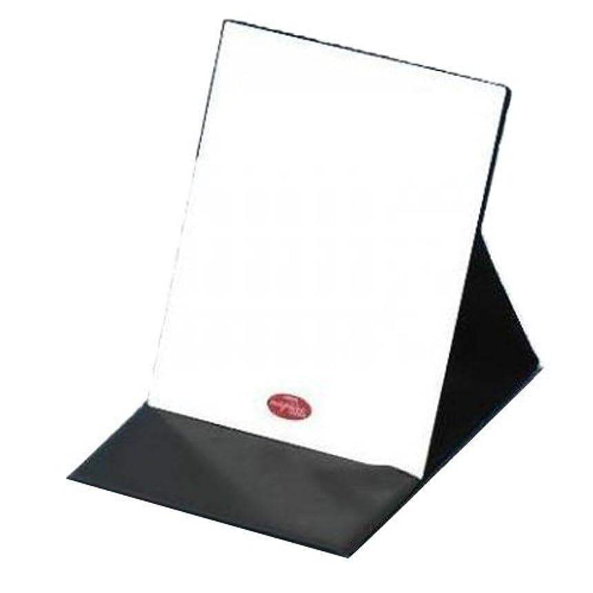 回想心理学通信するHP-43 ナピュア プロモデル拡大鏡付き折立ミラー(L)