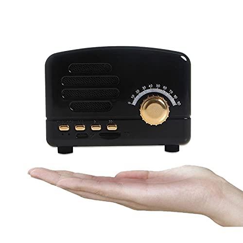 TYGH Am/FM/SW Transistores Radio Vintage Retro, Radio Blueteeth Portatil, Radio Portatil Pequeña Recargable con Batería De 1800mAh, USB Incorporado, SD,TF, Entrada AUX