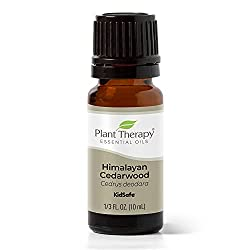 professional Herbal Therapy Himalayan Palm Derwood Essential Oil 10ml (1/3 oz) 100% Pure, Undiluted, For Treatment …