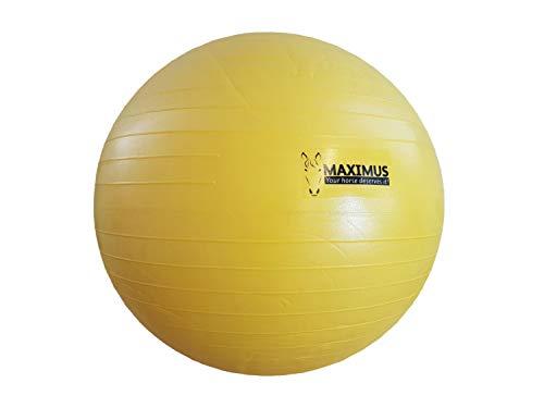netproshop Maximus Power Play paarden speelbal geel selectie, 100 cm