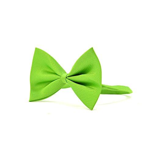 4yourpet Premium Halsschleife, Hundefliege, Fliege für Hunde (Grün)