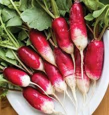Français Petit déjeuner Radis Heirloom Seeds non OGM délicieux Gourmet saveur longue (App 250 graines) Aucun suivi