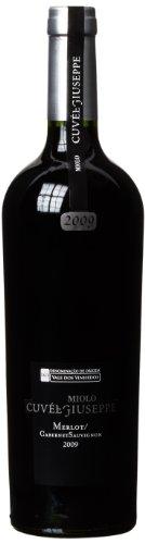Miolo Cuvée Guiseppe Cabernet Sauvignon & Merlot Brasilien Wein, 1er Pack (1 x 750 ml)