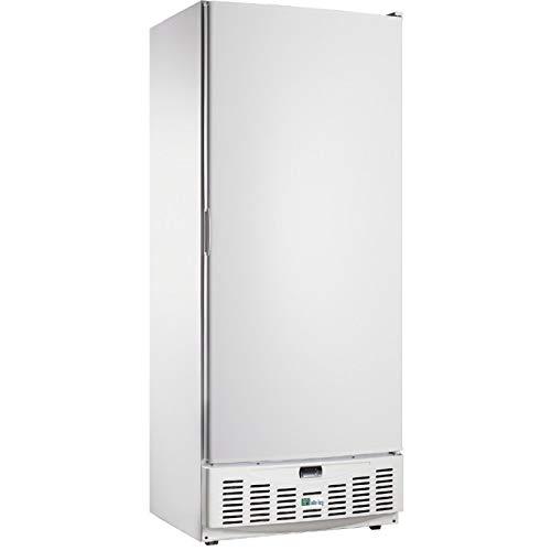 Armoire Réfrigérée Négative Porte Pleine - 520 Litres - AFI Collin Lucy - Blanc R290 1 Porte Pleine