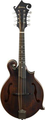 EASTMAN MD315 + TASCHE Andere Instrumente Mandolinen & Bouzioukis