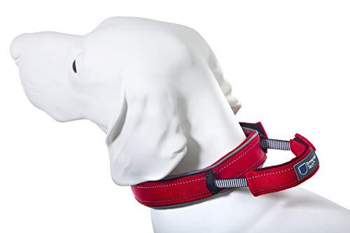 Armored Tech Dog Control Halsband mit integrierter Kurzleine (L - Halsumfang 45-53 cm, rot)