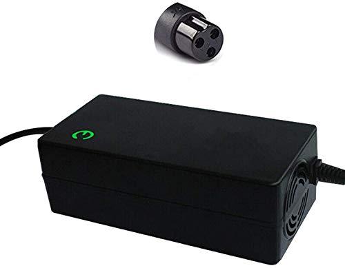 Cargador de 42 V para Bicicleta eléctrica Scooter Hoverboard monopatín Bicicleta eléctrica E-Bike Ebike batería Fuente de alimentación Adaptador de CA (Color : 5a)