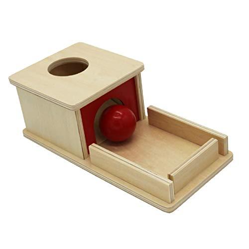 Lizefang Caja de Destino Permanente y Juguetes Montessori Herramientas de Material Montessori: Juguetes de caída de Pelota de Desarrollo Infantil para bebés Aprendizaje Educativo