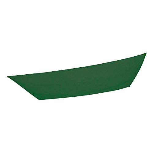 AKTIVE – Bâche Voile pour Jardin, Polyester, 2 x 3 m, Couleur Vert (COLORBABY 53919)