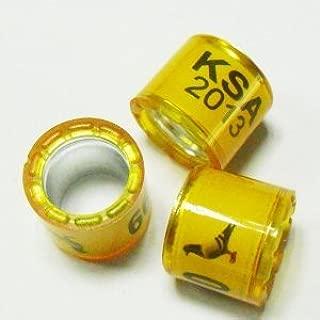 racing pigeon accessories
