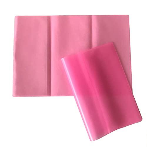 Funda para cartilla de vacunación (2 unidades, 14 x 20 cm), plegable, transparente, ligeramente mate, color rosa
