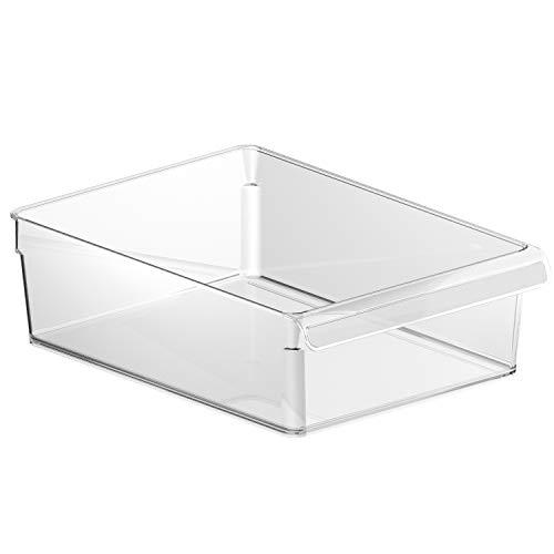 Rotho Loft Kühlschrank Organizer 5 L / Robuster Aufbewahrungsbehälter für Salat, Gemüse, Fleisch / Transparent / 1x (31 x 22 x 9 cm)