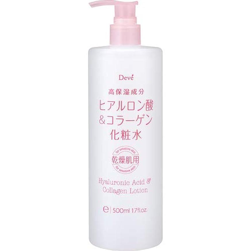 ステンレス乳製品ゲージディブ ヒアルロン酸&コラーゲン化粧水 500mL