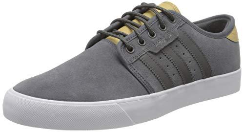 Adidas Seeley, Herren Skateboardschuhe, Mehrfarbig (Multicolor 000), 42 2/3 EU (8.5 UK)