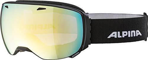 ALPINA Unisex - Erwachsene, BIG HORN QVMM Skibrille, black matt, One size