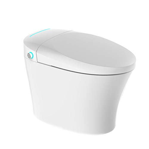 Mecor Intelligent Smart Toilet, Massage Washing, Auto Flush,Heated Seat with Integrated Multi Function Remote Control, With Advance Bidet And Soft Closing Seat,Smart Bidet
