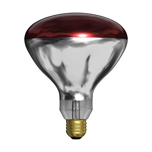 GE Incandescent Heat Lamp, BR40 Heat Lamp Bulb, 250-Watt, Medium Base, Red, 1-Pack, Recessed Light Bulb for Heat Lamps, Flood Light Heat Lamp Bulb
