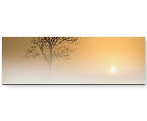 Paul Sinus Art Leinwandbilder   Bilder Leinwand 150x50cm Baum im Nebel