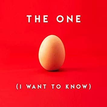 The One (I Want to Know)