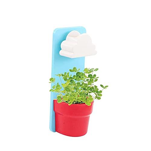 MRDUEWS Maceta Creativa, Planta de Lluvia de la Nube, Montaje en la Pared con Nubes duchas de Ducha, Agua Gotas de Agua vertiendo Ducha regadera Planta de Planta para jardín decoración de Oficina