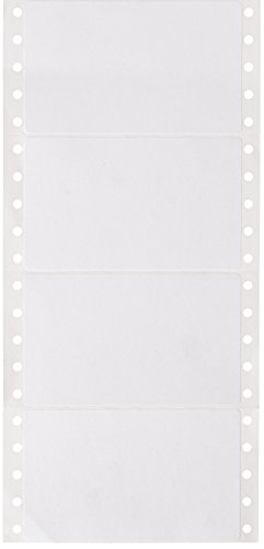 Compulabel Pinfeed Labels Fanfold Permanent Adhesive, 4' x 2.4375',...